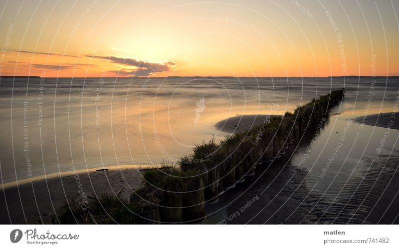 Grashalme Himmel Natur blau Wasser Sonne Landschaft Wolken Frühling Küste grau Sand Horizont orange Schönes Wetter Holzpfahl