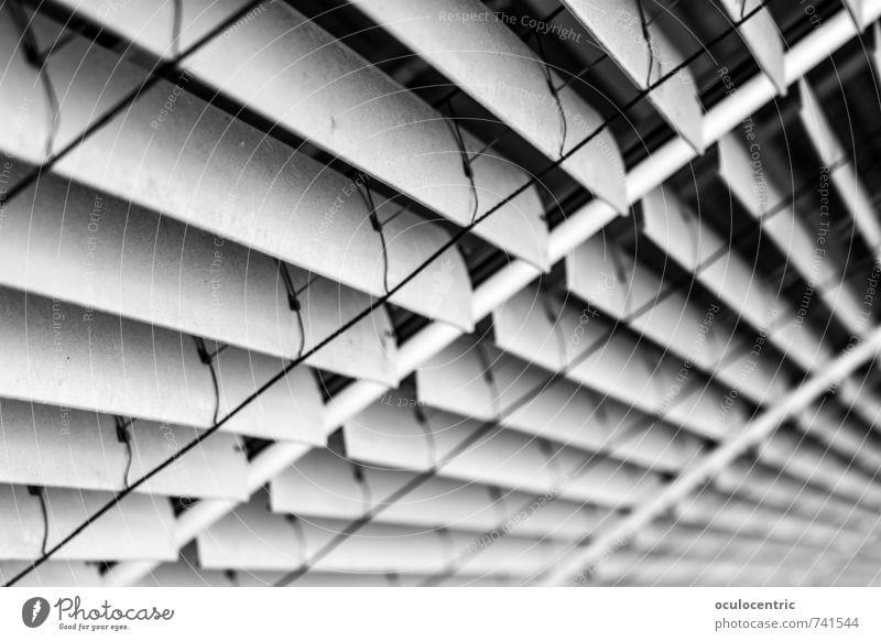 Verschiedene Grautöne von Grau Mauer Wand Coolness grau Rollladen Fensterladen Fluchtpunkt Streifen Rollo Strukturen & Formen geschlossen Schwindelgefühl