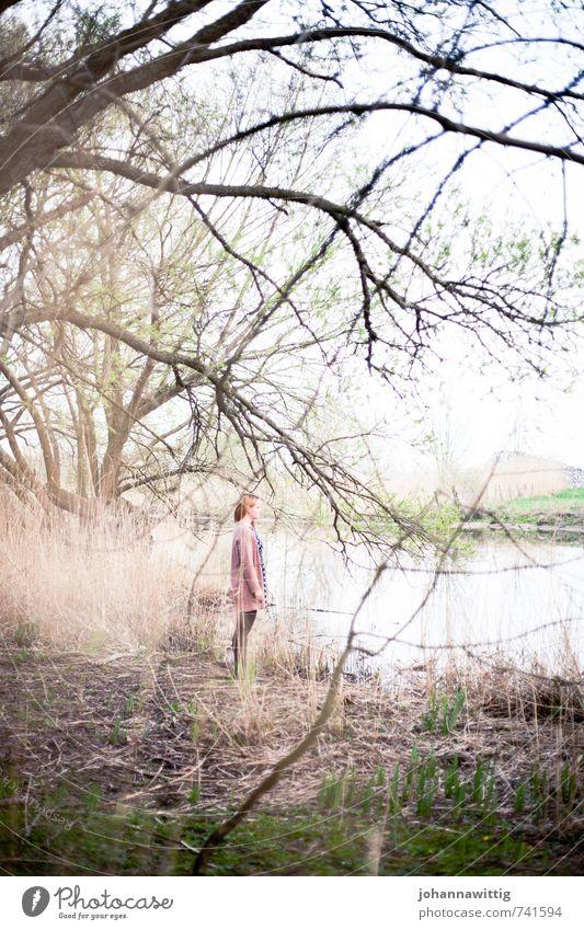 what are you afraid of? Mensch Natur Pflanze grün Baum ruhig Wald Umwelt Linie rosa Zufriedenheit stehen ästhetisch einzigartig geheimnisvoll Sehnsucht