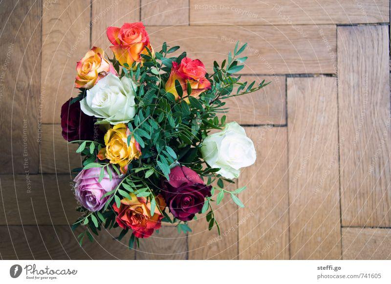 Happy Birthday I Pflanze Blume Liebe natürlich Feste & Feiern Freundschaft frisch elegant Geburtstag Lebensfreude Geschenk Hochzeit Rose Kitsch Blumenstrauß
