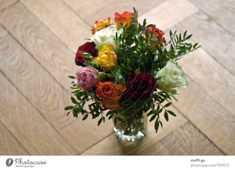 Happy Birthday II Pflanze Blüte Liebe Gefühle natürlich Feste & Feiern Freundschaft frisch elegant Geburtstag Lebensfreude Geschenk Romantik Hochzeit Rose