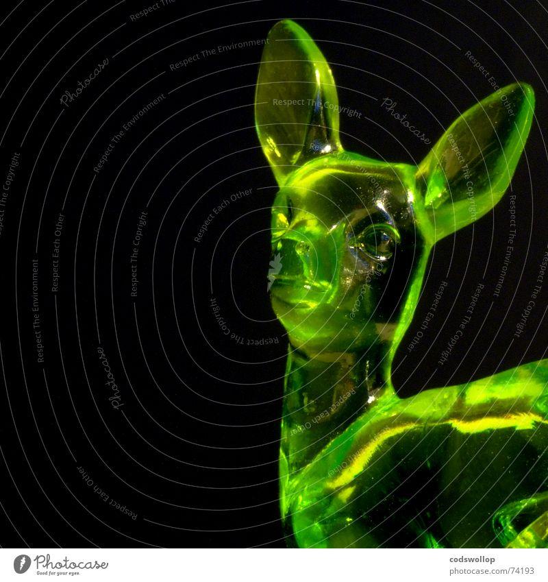 jeannine Hirsche grün gelb schwarz Reflexion & Spiegelung Säugetier Dekoration & Verzierung deer black colour Farbe plastic Statue Kunststoff reflection glass