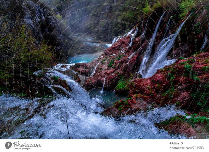 Wunderland Umwelt Natur Landschaft Pflanze Urelemente Wasser Wassertropfen Park Schlucht Wasserfall Plitzvicer Wasserfälle blau braun grün rot türkis Farbfoto