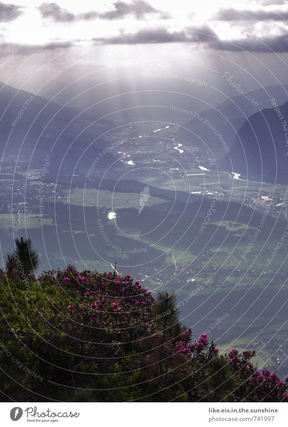 100% alpen-romantik Himmel Natur Einsamkeit Erholung Landschaft ruhig Wolken Ferne Wald Umwelt Berge u. Gebirge Leben Gras Freiheit Wetter Zufriedenheit