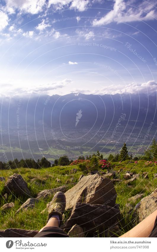 einfach mal raus. Natur Ferien & Urlaub & Reisen Sommer Erholung Landschaft Ferne Umwelt Berge u. Gebirge Leben Gras Freiheit Felsen Freizeit & Hobby Zufriedenheit Sträucher wandern