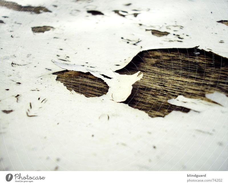 Out Of Lack [.] trocken porös Holz Holzmehl abblättern Vergänglichkeit labil Loch aufgebrochen Verfall sitzfläche Stuhl morbide alt am löchesten abgebrochen
