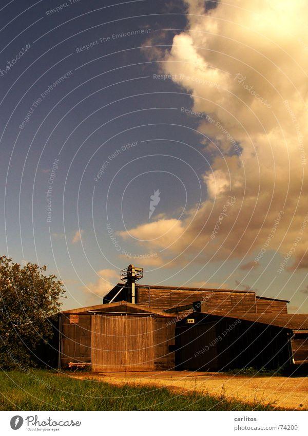 Wenn Gott eine Frau wäre ... Scheune Aussiedlerhof Herbst Wolkenhimmel Physik feldscheune Natur Wärme Sommer