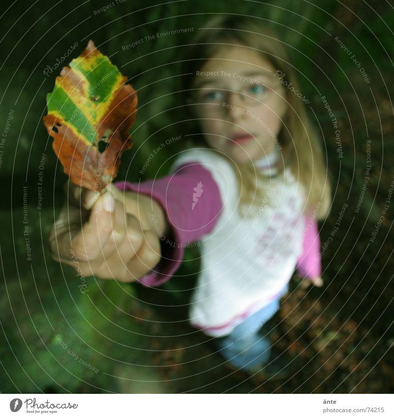 guck mal, es wird herbst! Kind Natur Hand schön Blatt Herbst Spielen klein Traurigkeit blond Finger Brille Show Trauer festhalten entdecken
