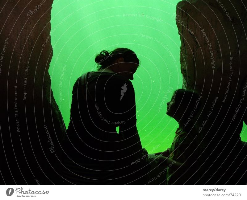 schattenrisse Mensch Wasser grün schwarz dunkel Höhle Unterwasseraufnahme