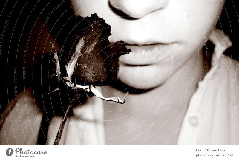This Rose Dryes Up weiß Blume schwarz dunkel Traurigkeit Mund Nase Trauer Lippen trocken getrocknet