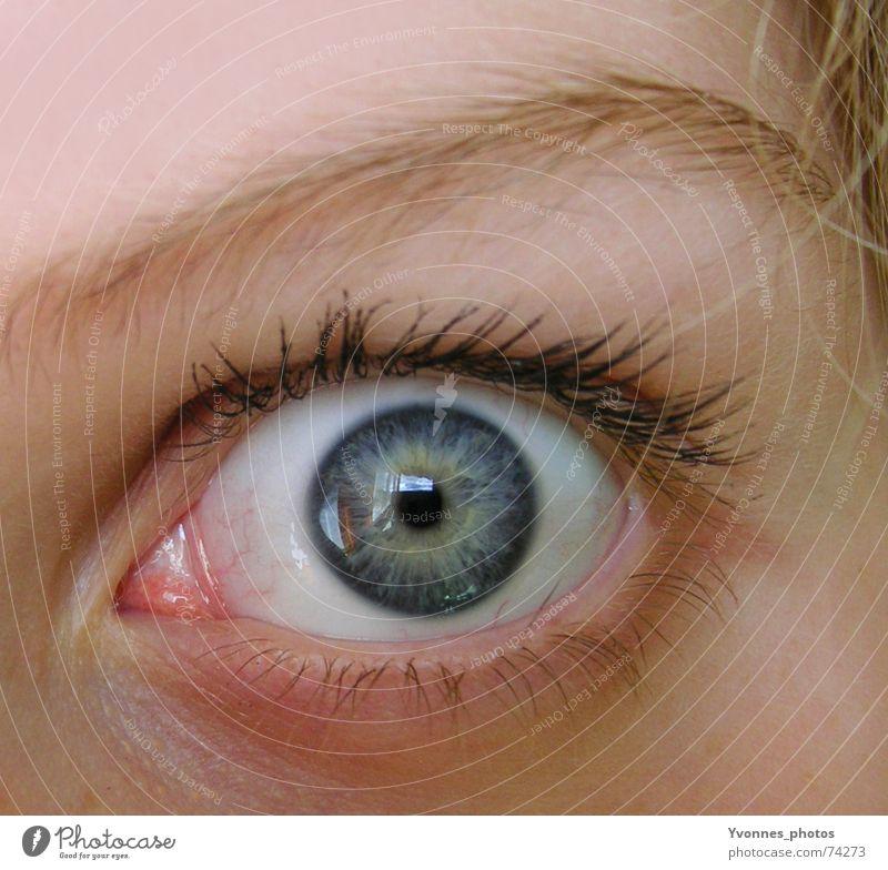 oh schreck... Farbfoto Detailaufnahme Makroaufnahme Reflexion & Spiegelung Blick Blick in die Kamera Blick nach vorn Gesicht Lampe Publikum Mensch Auge blond