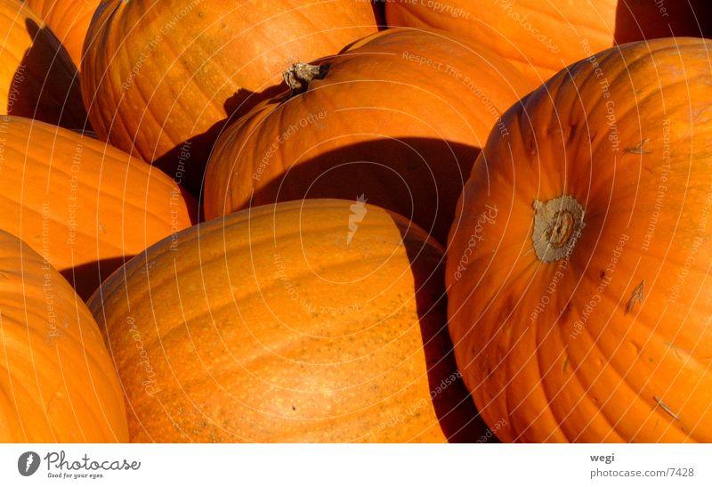 Kürbis Farbfoto Licht Schatten Gemüse Vegetarische Ernährung Halloween gelb