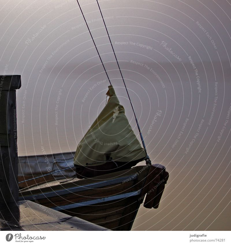 Morgens am Hafen Natur Wasser ruhig Einsamkeit Herbst See Landschaft Wasserfahrzeug Stimmung Küste Nebel Seil Steg Anlegestelle Segel