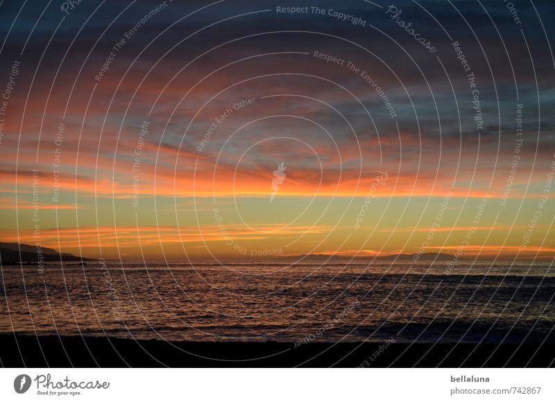 Wärme fürs Gemüt Umwelt Natur Landschaft Sand Wasser Himmel Wolken Gewitterwolken Horizont Sonne Sonnenaufgang Sonnenuntergang Sonnenlicht Sommer Schönes Wetter