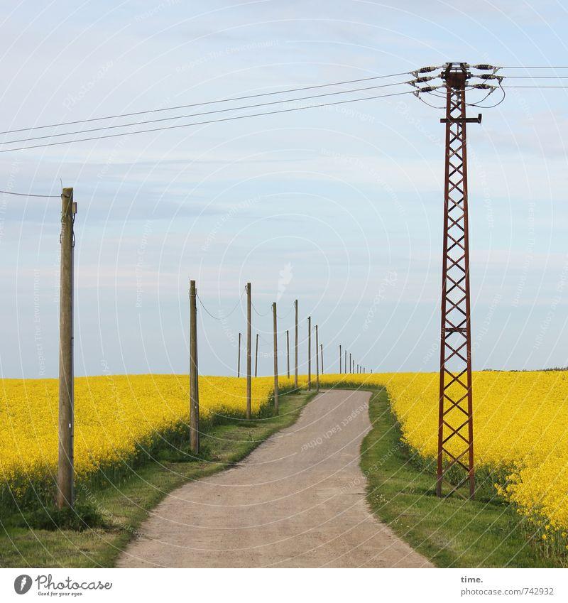 Da freut sich der Endverbraucher Natur Landschaft Ferne Umwelt Wege & Pfade Horizont Feld Verkehr Ordnung Energiewirtschaft Schönes Wetter Technik & Technologie