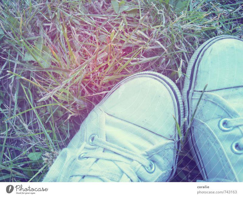 Festivalsommer Jugendliche Sommer Erholung ruhig Wiese Gras Fuß Park Zusammensein Schuhe 13-18 Jahre Coolness retro Rasen sportlich Picknick