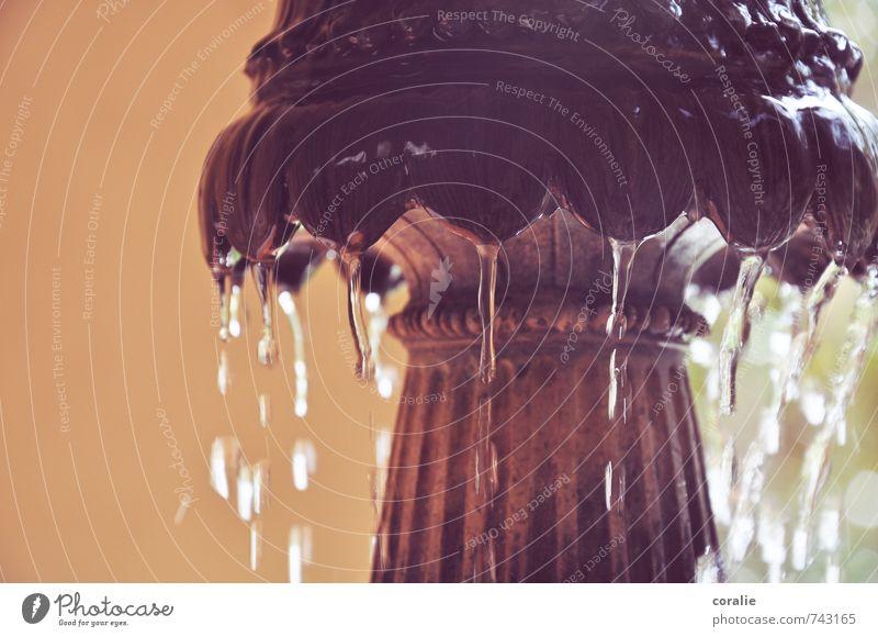 Brunnen Skulptur Wasser Wassertropfen Garten Park Tropfen elegant Flüssigkeit frisch kalt ästhetisch Bewegung fließen Nahaufnahme nass Strukturen & Formen