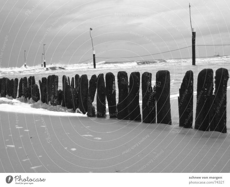 aber rückenwind Natur Wasser Meer Strand ruhig schwarz Wolken Holz grau Sand Regen Linie Wellen Wind Wetter Umwelt