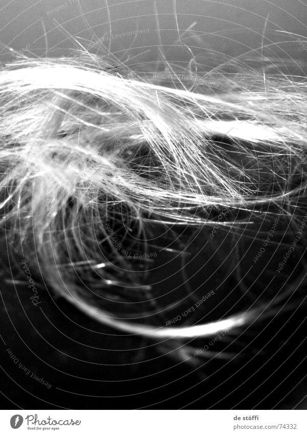 nix da friseur! dunkel Wege & Pfade hell blond ziehen geschnitten Haarsträhne nervig Fetzen