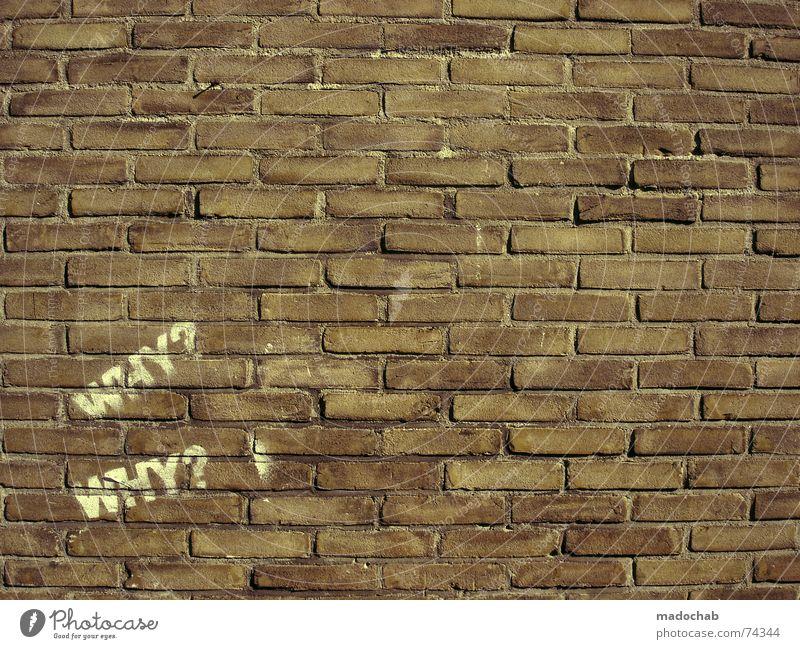 Backsteinwand mit Graffitti Schriftzug und viel Textfreiraum mit einem Fragezeichen Wand Mauer sprühen Bombe Schablone Spray Wort warum Typographie rot Stadt