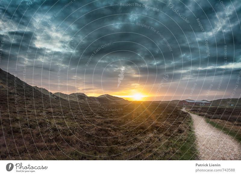 Morgenland Natur Pflanze Sommer Sonne Meer Erholung Landschaft ruhig Wolken Umwelt Wege & Pfade Luft Wetter Zufriedenheit Sträucher Insel