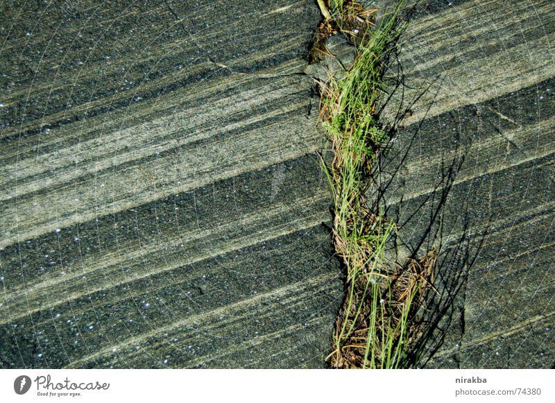 Geraden Gras grau grün Streifen Stein Felsen Linie