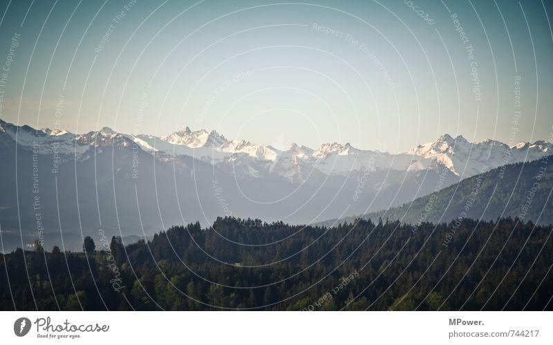 allgäu Umwelt Natur Landschaft Frühling Schönes Wetter Pflanze Wald Felsen Alpen Berge u. Gebirge Gipfel Schneebedeckte Gipfel glänzend Ferien & Urlaub & Reisen