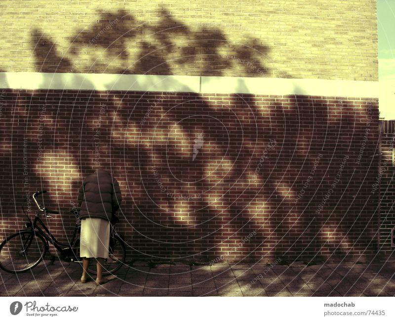 HALLO FRAU NACHBARIN Mensch Frau Baum Sommer Farbe dunkel kalt Wand Wärme Senior Mauer Denken Fahrrad Sicherheit Physik Burg oder Schloss