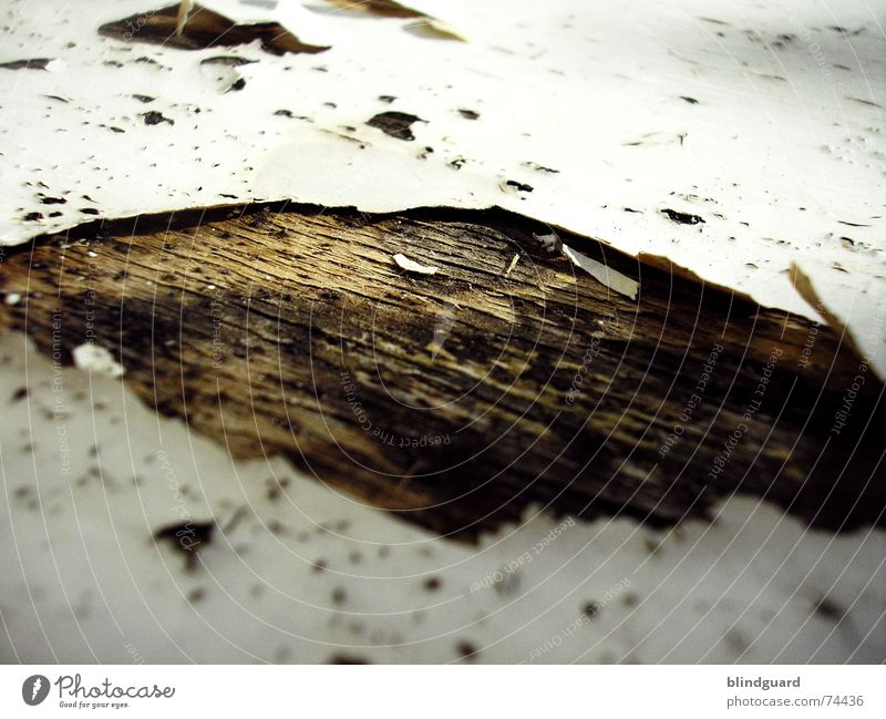 Out Of Lack [..] alt Holz Stuhl Vergänglichkeit verfallen Verfall trocken Loch abblättern Holzmehl labil porös aufgebrochen