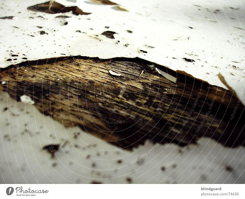 Out Of Lack [..] trocken porös Holz Holzmehl abblättern Vergänglichkeit labil Loch aufgebrochen Verfall sitzfläche Stuhl morbide alt am löchesten abgebrochen
