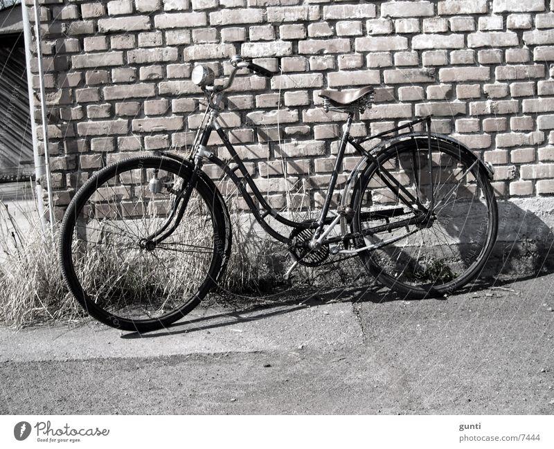Ride my old Bike Fahrrad Nostalgie Originalität Staub Mauer Steinwand Verkehr alt Rost Ledersattel