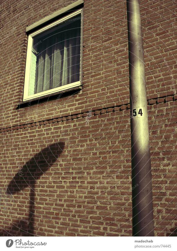 EXISTENZ Haus Hochhaus Gebäude Material Fenster live Block Beton Etage Vermieter Mieter trist Ghetto hässlich Stadt Design Bürogebäude Ladengeschäft