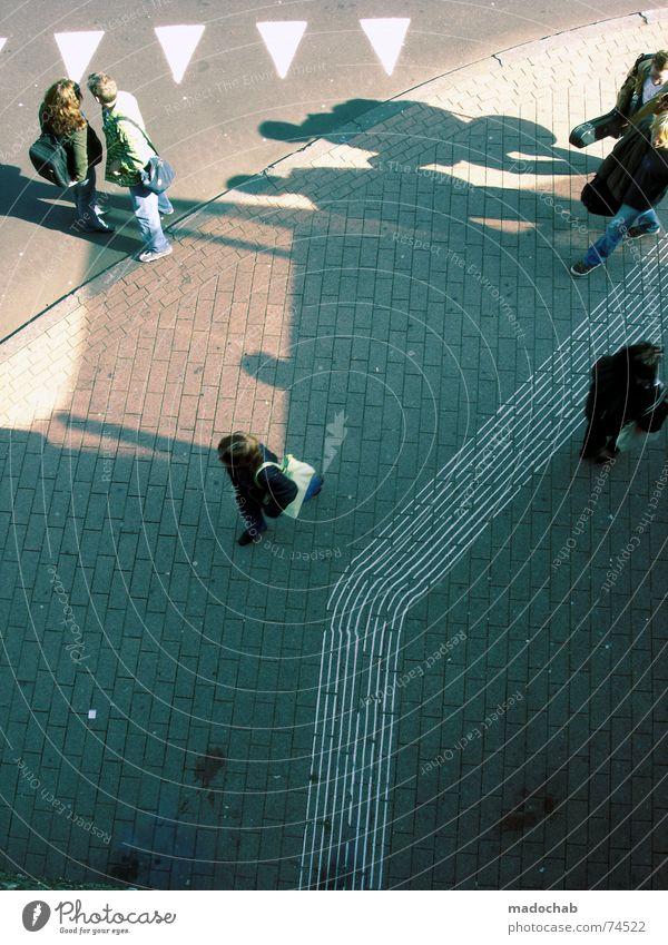 FUSSGÄNGERZONE Stadt Asphalt grau unten Fußgänger Verkehr trist Muster Hintergrundbild Strukturen & Formen Dreieck Kaugummi Richtung gehen graphisch weiß Herbst