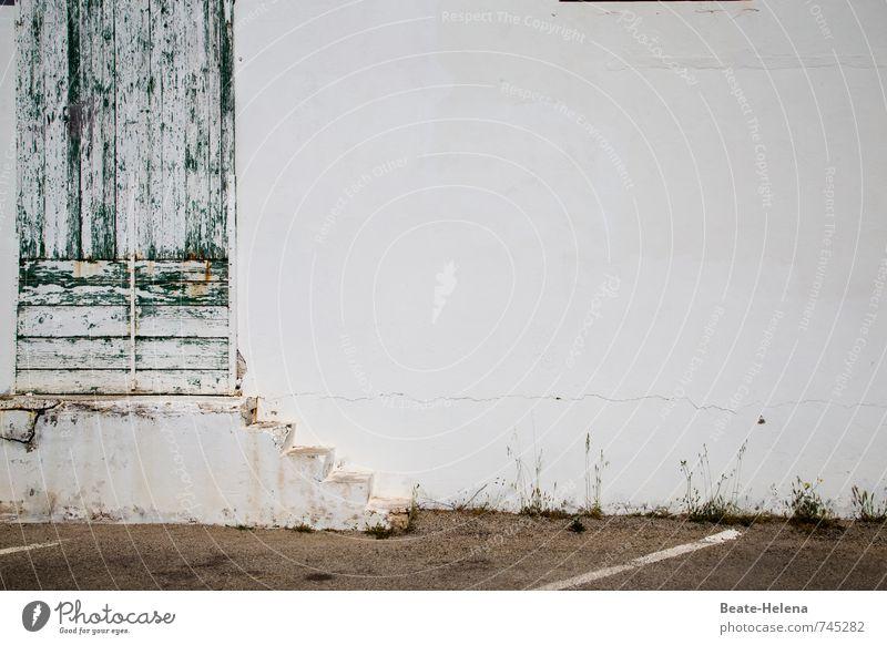 Aufstiegsmöglichkeit alt grün weiß Haus Wand Wege & Pfade Mauer braun Lifestyle Treppe Tür geschlossen ästhetisch Sauberkeit kaputt Textfreiraum