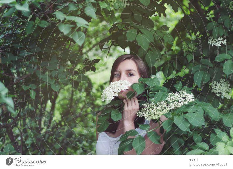 Hallo Sommer Mensch feminin Junge Frau Jugendliche Erwachsene Gesicht Hand 1 13-18 Jahre Kind 18-30 Jahre Landschaft Sträucher Holunderbusch Holunderblüte Blume