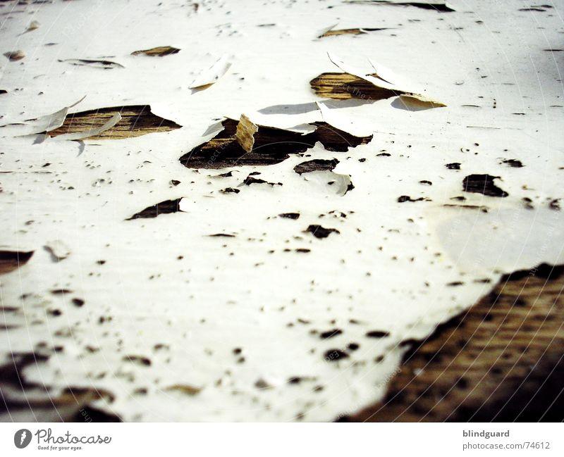 Out Of Lack [...] alt Holz Stuhl Vergänglichkeit verfallen Verfall trocken Loch Lack abblättern Holzmehl labil porös aufgebrochen