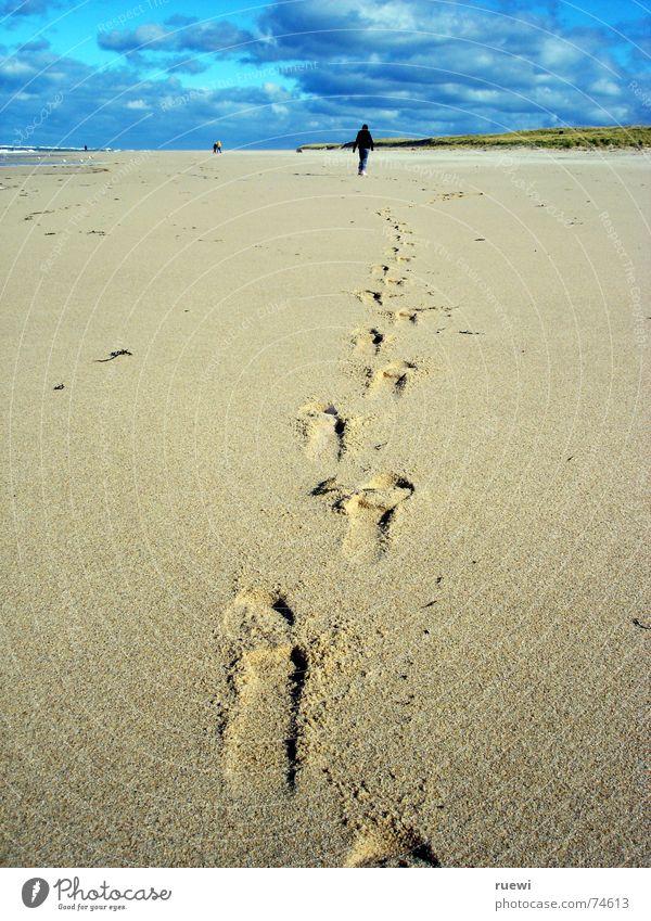 Heiße Spur Mensch Frau Himmel Natur Ferien & Urlaub & Reisen grün Strand Freude Wolken Erwachsene Ferne Sport Küste Sand Fuß braun