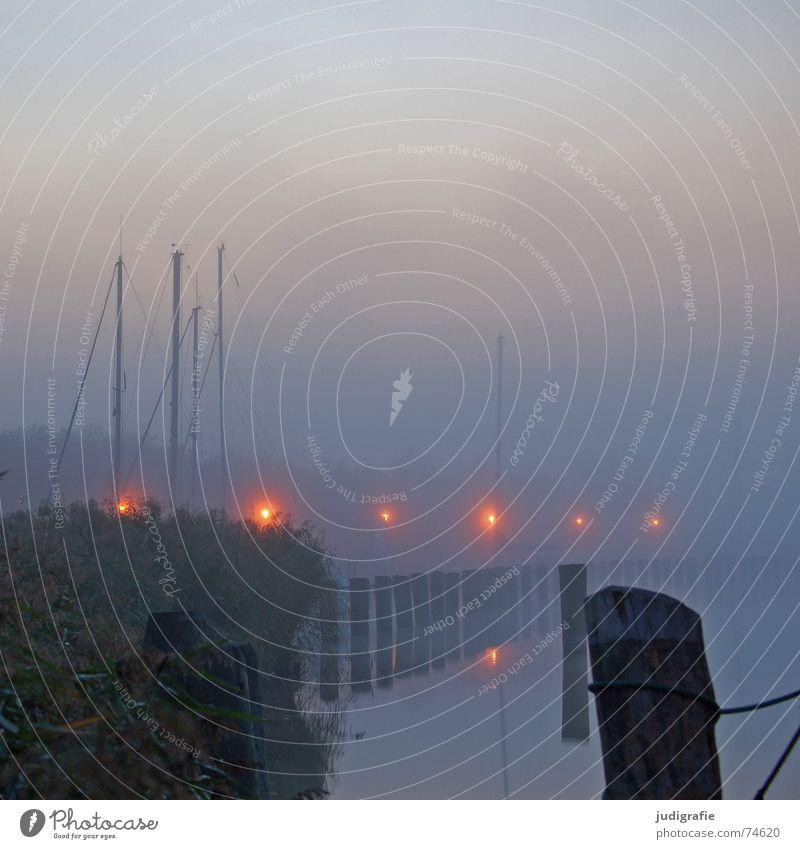 Hafenlichter See Lampe Nebel Morgen Wasserfahrzeug Steg ruhig Einsamkeit Stimmung Licht Sonnenaufgang Reflexion & Spiegelung Wasseroberfläche Zingst