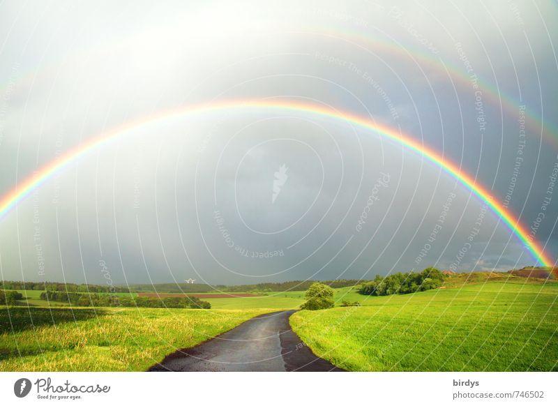 Under the rainbow Natur Landschaft Urelemente Gewitterwolken Frühling Sommer Pflanze Wiese Straße leuchten ästhetisch außergewöhnlich fantastisch positiv schön