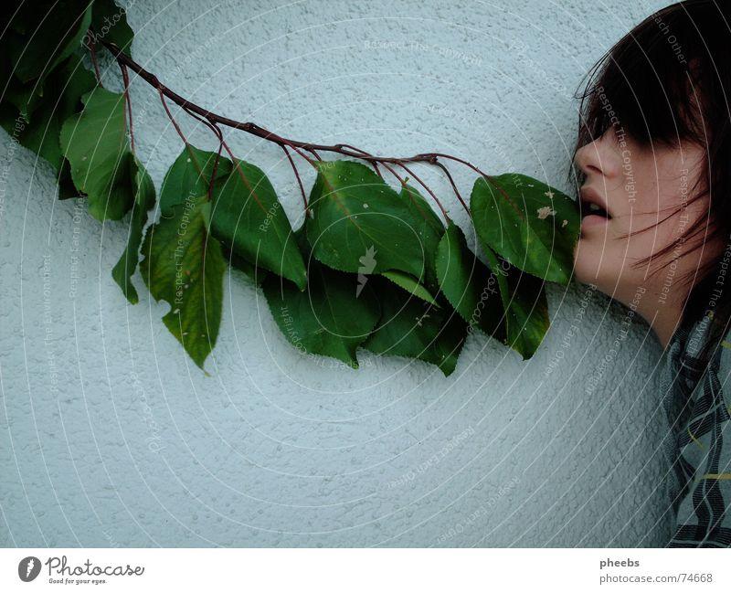 herbsthunger Frau Mensch Baum Gesicht Blatt Herbst grau Haare & Frisuren Mauer hell Lippen Ast Pullover