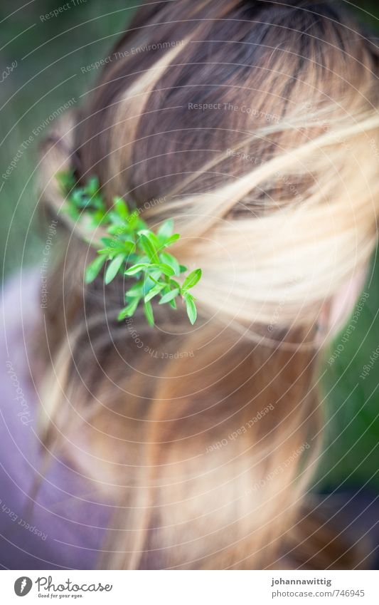 life's a song Jugendliche schön grün ruhig feminin Haare & Frisuren natürlich Glück Denken außergewöhnlich hell Zufriedenheit blond Sträucher authentisch frisch