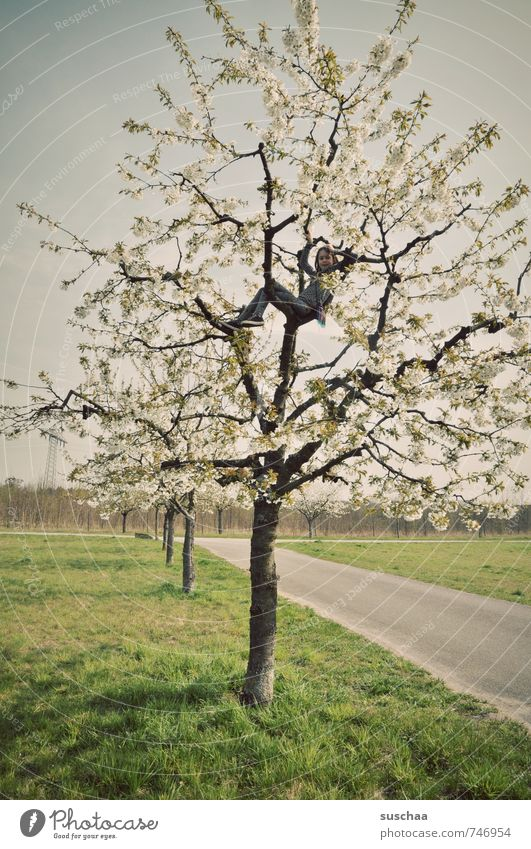 ... frühling Mensch Kind Natur Baum Landschaft Mädchen Umwelt Leben Frühling Junge Körper Kindheit frei Klima Schönes Wetter Klettern