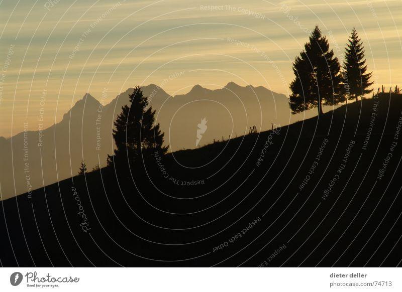 Mountain Sunset Berge u. Gebirge Abenddämmerung Berghang Bergkette alpin Fichte Schlagschatten