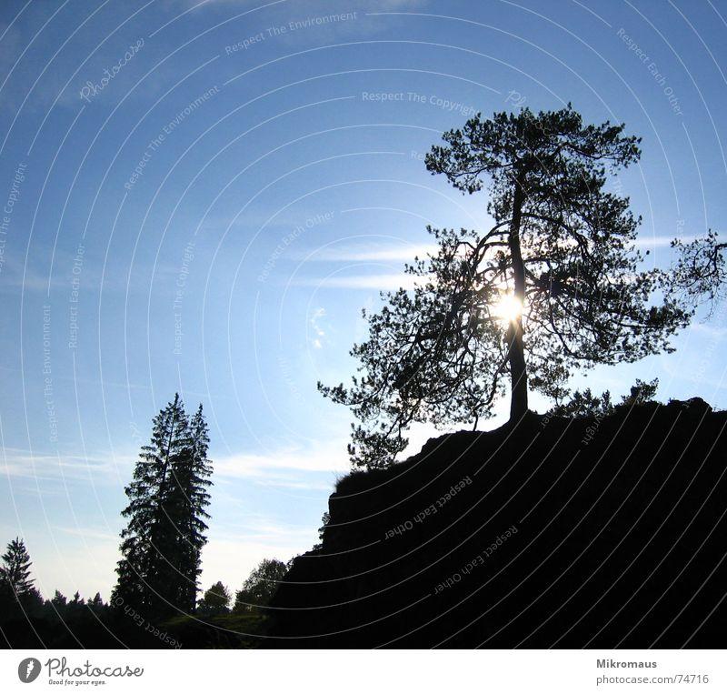 Gegenlicht Himmel Baum Sonne blau Wolken Berge u. Gebirge Landschaft Felsen Hügel Abenddämmerung Abendsonne