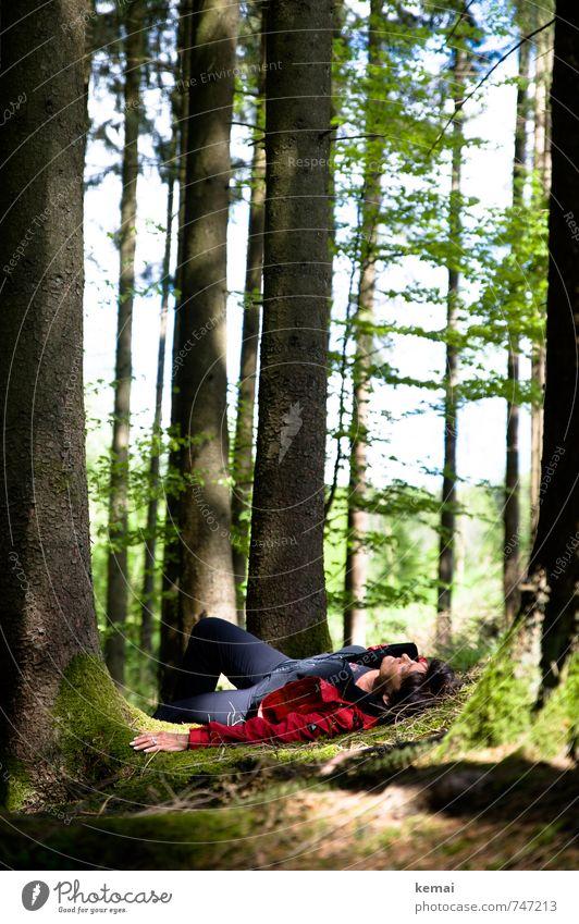 Holla, die Waldfee. Mensch Natur grün Baum Erholung rot Hand ruhig Landschaft Umwelt Erwachsene Leben feminin Beine Kopf