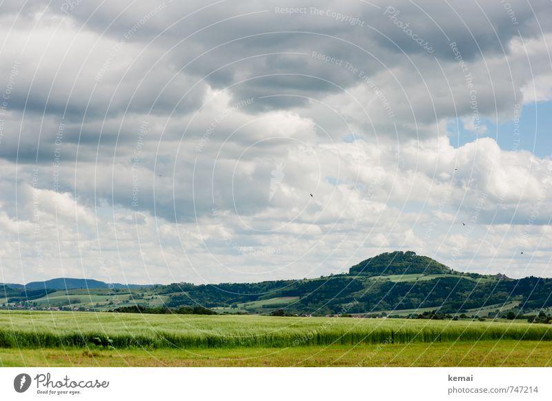 Love your Heimat // Wahrzeichen Himmel Natur schön grün Pflanze Landschaft ruhig Wolken Wald Umwelt Berge u. Gebirge Frühling Vogel Wetter Feld frisch