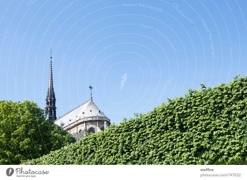 Dame, Hinterteil Wolkenloser Himmel Frühling Schönes Wetter Hecke Paris Frankreich Stadt Hauptstadt Kirche Sehenswürdigkeit Wahrzeichen Notre-Dame blau grün