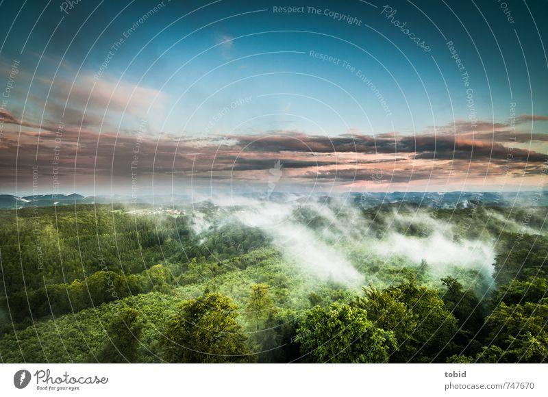 Wide Sky Ferne Freiheit Berge u. Gebirge Natur Landschaft Pflanze Luft Himmel Wolken Horizont Sonnenlicht Frühling Klima Wetter Nebel Baum Wald Hügel