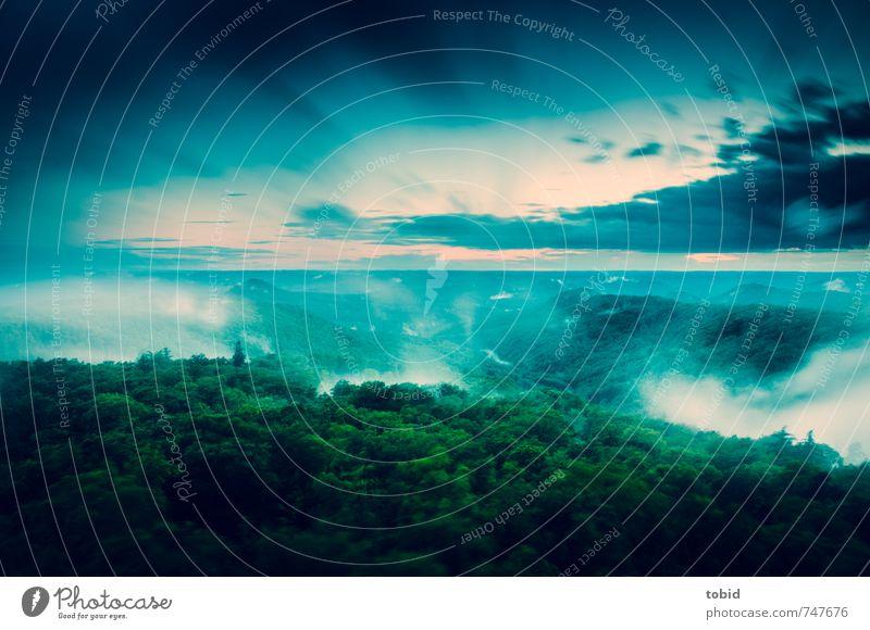 A cloudy day Himmel Natur Wasser Pflanze Baum Landschaft Wolken Ferne Wald Bewegung Horizont Luft Freizeit & Hobby Wetter Nebel Wind