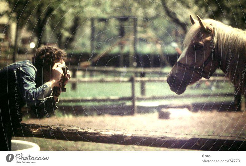 Machwas! Dito! ruhig Arbeitsplatz maskulin Mann Erwachsene 1 Mensch Tier Sommer Schönes Wetter Park Weide Jacke blond Pony Pferd beobachten festhalten